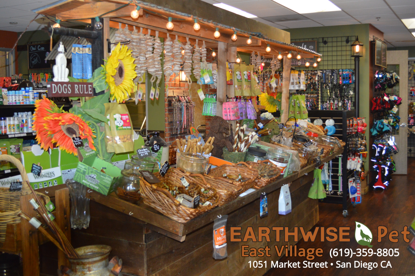Home · Earthwise Pet - East Village | San Diego Pet Supplies